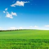 Pole i niebo Obrazy Stock