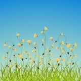 pole kwitnie wiosna ilustracja wektor