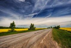 pole malowniczy rapeseed pole Droga blisko pola zachmurzone niebo Zdjęcia Royalty Free