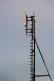 Pole mobile Telecommunication of communication. Royalty Free Stock Photo