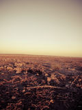 Pole podczas wschodu słońca Obrazy Stock