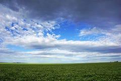 Pole przeciw niebu, rolnictwu i uprawiać ziemię ziemi z, niebem i chmurami w Wiktoria, Australia Zdjęcie Stock
