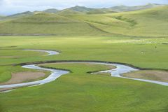POLE PRZY HULUNBEIR CHINY zieleni BARANIĄ BŁĘKITNĄ rzeką zdjęcia royalty free