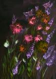 Pole róże i lupines z motylami przy nocą Fotografia Royalty Free