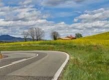 Pole rapeseed z domem, drzewem i niebieskim niebem, obraz stock