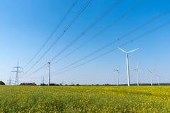 Pole rapeseed z wysokonapięciowymi liniami i silnikami wiatrowymi obrazy royalty free