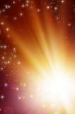 Pole stokrotki, zaświecający słońcem Fotografia Stock