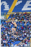 Pole vault athlete Royalty Free Stock Photos