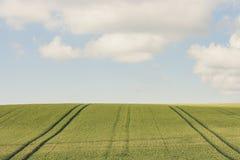 Pole w południowym Szwecja zdjęcie stock