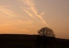 Pole w Szczytowym Gromadzkim parku narodowym, UK Obrazy Royalty Free