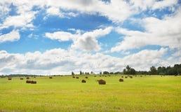 Pole w wsi Fotografia Stock