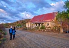 Pole winogrona w Karoo obraz stock