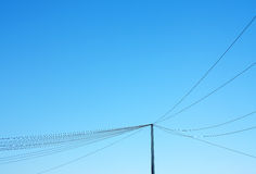 Pole and wires. Telephone pole and hanging lines network against blue sky Stock Photos