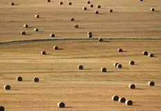 Pole z dużymi belami słoma w przypadkowym wzorze Zdjęcia Royalty Free