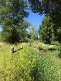 Pole z kwiatami, strumieniem i ogrodzeniem, Zdjęcia Royalty Free
