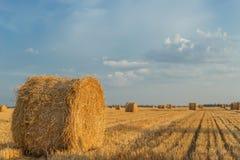 pole z słoma belami po żniwa z chmurnym niebem w zmierzchu zdjęcie stock