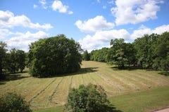 Pole z skoszoną trawą w lesie, park Widok uprawia ziemię pole z świeżo koszącą trawą teraz kłama w rzędach gotowych być colle obrazy stock