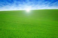 Pole z zieloną trawą i niebem z chmurami Czysty, idylliczny, piękny lato krajobraz z słońcem, zdjęcie royalty free