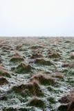 pole zakrywający śnieg Fotografia Royalty Free