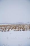 pole zakrywający śnieg obraz stock