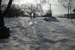 Pole zakrywający z śniegiem w zimie zdjęcie stock