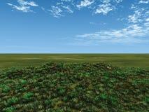 pole zieleń Obrazy Royalty Free