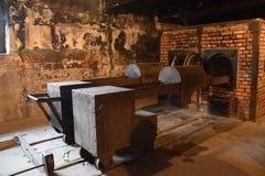 Polen Auschwitz koncentrationsläger Arkivfoton