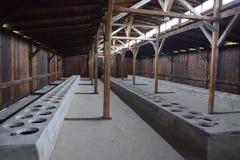 Polen Auschwitz koncentrationsläger Arkivbild