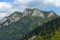 Polen - berglandskap Pieniny Arkivfoton