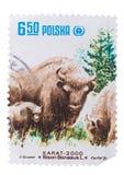 POLEN - CIRCA 1981: Een Zegel wordt gedrukt in toont reeks die van royalty-vrije stock afbeeldingen