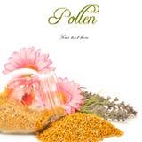 Polen de la abeja en el tarro y las flores de cristal Imágenes de archivo libres de regalías