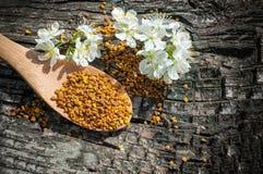 Polen de la abeja en una cuchara de madera y flores de los árboles de la primavera Apitherapy Productos de la abeja Foto de archivo