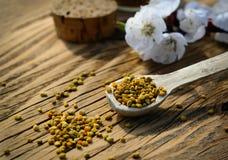 Polen de la abeja en una cuchara de madera y flores de los árboles de la primavera Apitherapy Productos de la abeja Imágenes de archivo libres de regalías