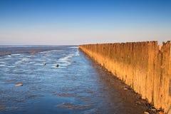 Polen in de oceaan bij zonsondergang stock afbeeldingen
