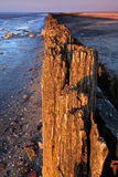 Polen in de oceaan bij zonsondergang royalty-vrije stock afbeelding