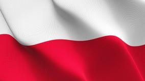 Polen fahnenschwenkend auf Wind lizenzfreies stockbild