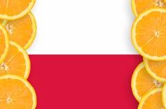 Polen flagga i vertikal ram för citrusfruktskivor arkivfoto