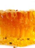 Polen fresco de oro del panal y de la abeja. textura Fotos de archivo