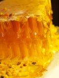 Polen fresco del panal y de la abeja. cierre para arriba Foto de archivo libre de regalías