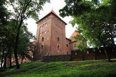 Polen gammal slott Nidzica Royaltyfri Fotografi