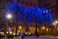 POLEN, GDANSK - DECEMBER 30, 2014: Bomen in de feestelijke decoratie op de Lange straat van Marktdlugi Targ vóór Kerstmis Royalty-vrije Stock Fotografie