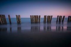 Polen op het strand Stock Fotografie
