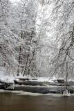 Polen - Roztocze, Winter Lizenzfreies Stockbild