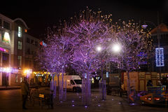 POLEN, SOPOT - 14 DECEMBER, 2014: Bomen in de feestelijke decoratie op straat vóór Kerstmis Royalty-vrije Stock Foto's