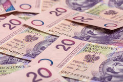 Polen valuta Royaltyfria Bilder
