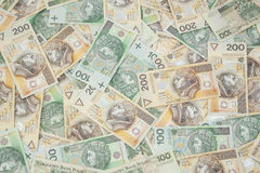 Polen valuta Royaltyfri Fotografi