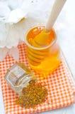 Polen y miel Imagen de archivo libre de regalías