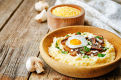 Polenta with caramelised mushrooms, egg, cilantro and cheese Stock Photography