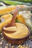 Polenta de poussières abrasives de maïs Image libre de droits