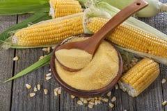 Polenta de poussières abrasives de maïs Image stock